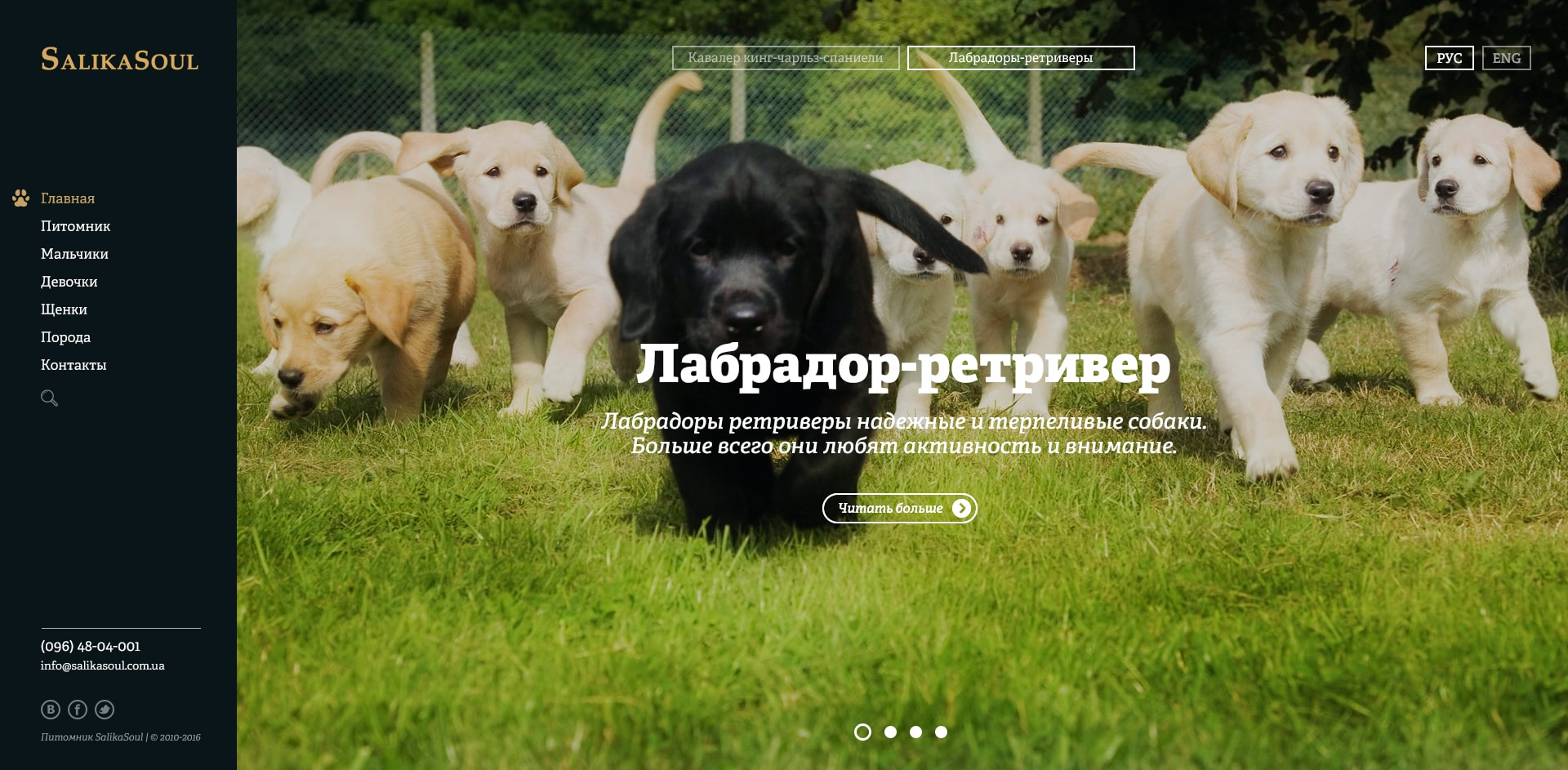 https://vladimir-alexandrov.com/wp-content/uploads/2017/10/SalikaSoul_0-min.jpg